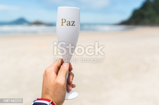 873333520 istock photo Guy Celebrating the New Year with Champagne with Peace Word (in Portuguese) 1067462222