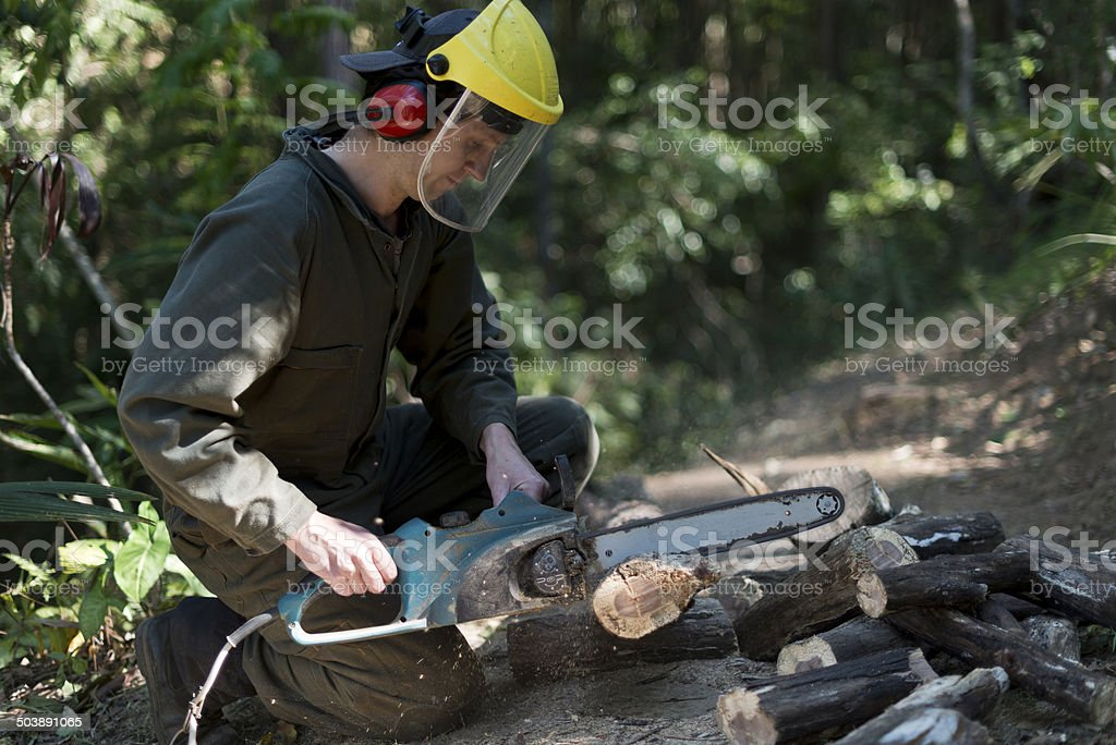 Guy Sawing Wood with Electric Chainsaw stock photo