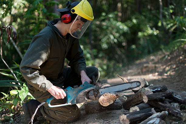 guy sawing wood with electric chainsaw - helmet visor stock photos and pictures