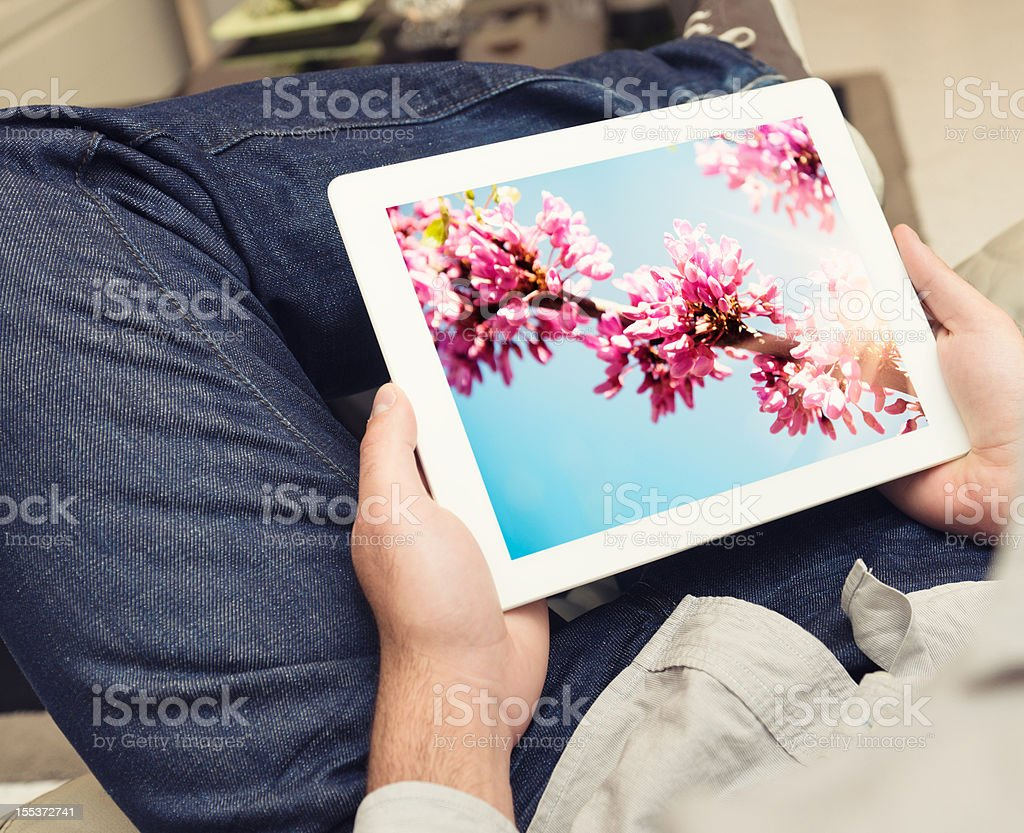 Guy watching a spring image on digital tablet screen royalty-free stock photo