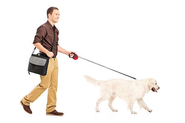Guy with shoulder bag walking a dog picture id177797936?b=1&k=6&m=177797936&s=612x612&w=0&h=g590piusep7pbrrgqjtxlyo3tcnh5ovl35 xd1ufuni=