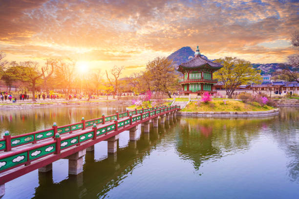 gyeongbokgung palace in spring, south korea. - south korea stock pictures, royalty-free photos & images