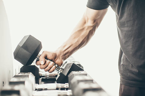 gym - human arm stock pictures, royalty-free photos & images