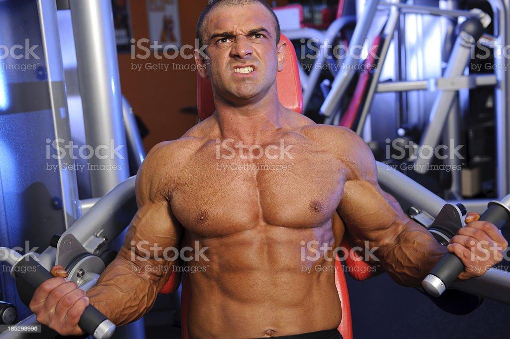 Gym Workout royalty-free stock photo