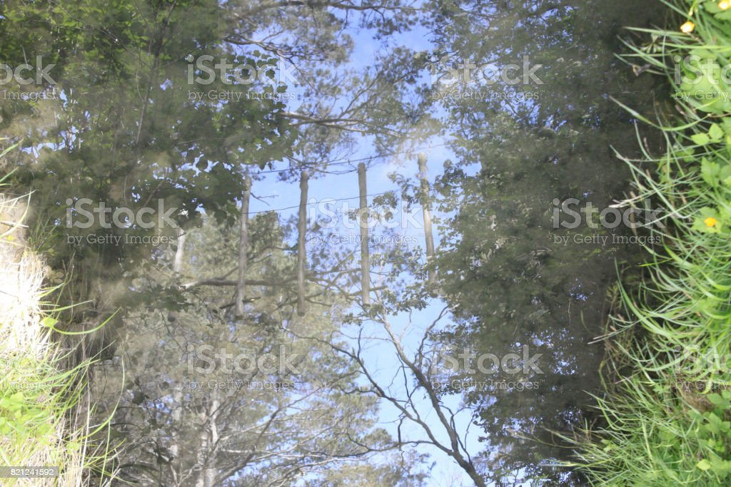 gymkhana reflected in the water and some trees too stock photo