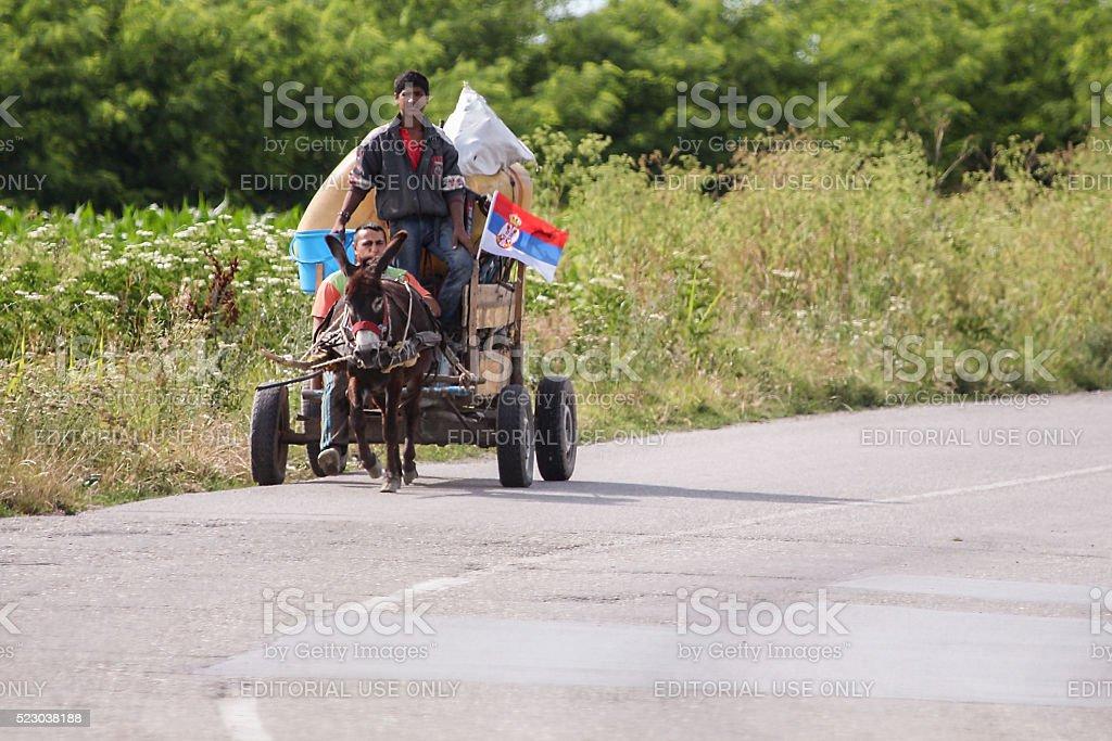 Os ciganos em Carroça de Burro - fotografia de stock