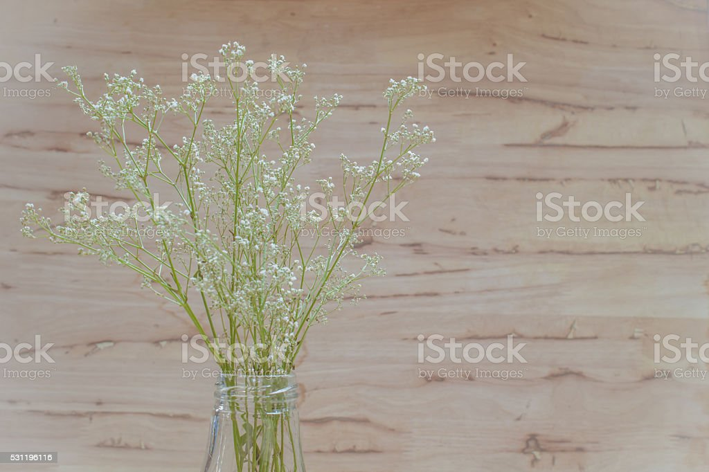 Gypsophila (Baby's-breath) flowers, in glass vase on wooden background.