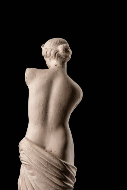 gypsum plaster sculpture of venus - renaissance stock pictures, royalty-free photos & images