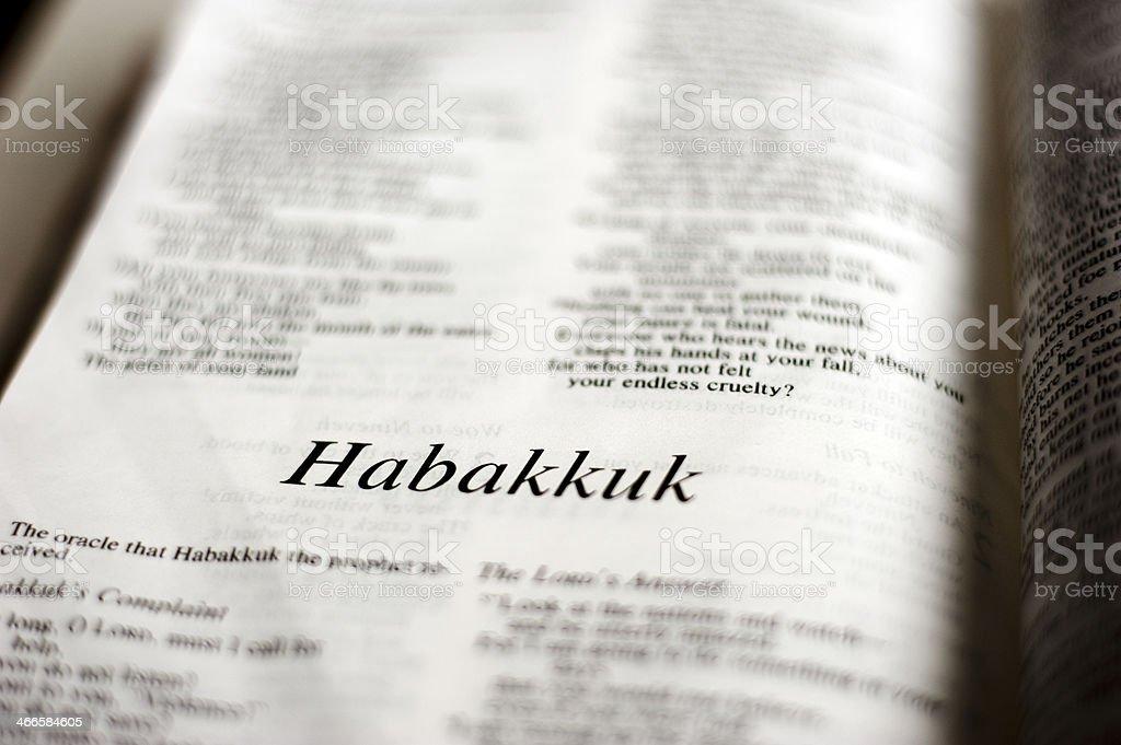 Habakkuk royalty-free stock photo