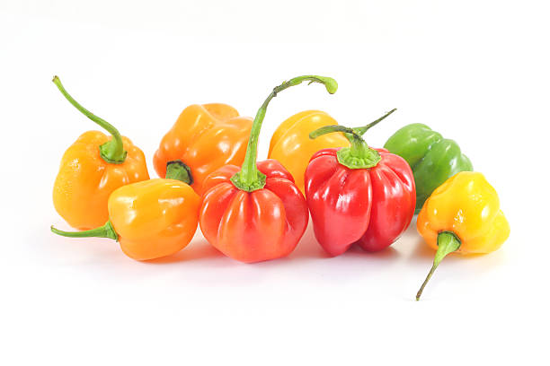 Habanero Chili Pepper Hot spicy Habanero Chili Pepper on white background bonnet stock pictures, royalty-free photos & images