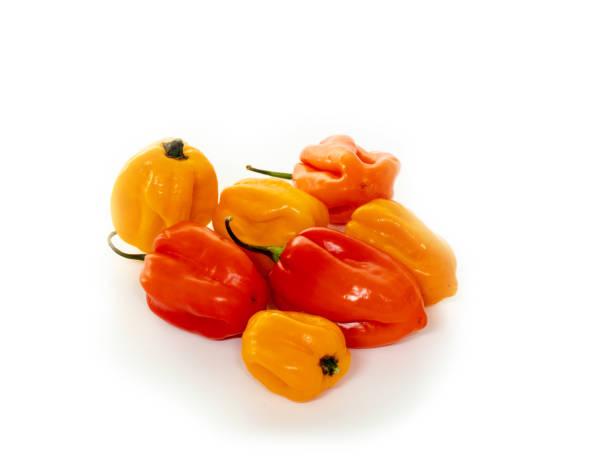 0665 habanero pepper, jalapeno, capsicum annuum, small sharp pepper snaps, white background stock photo