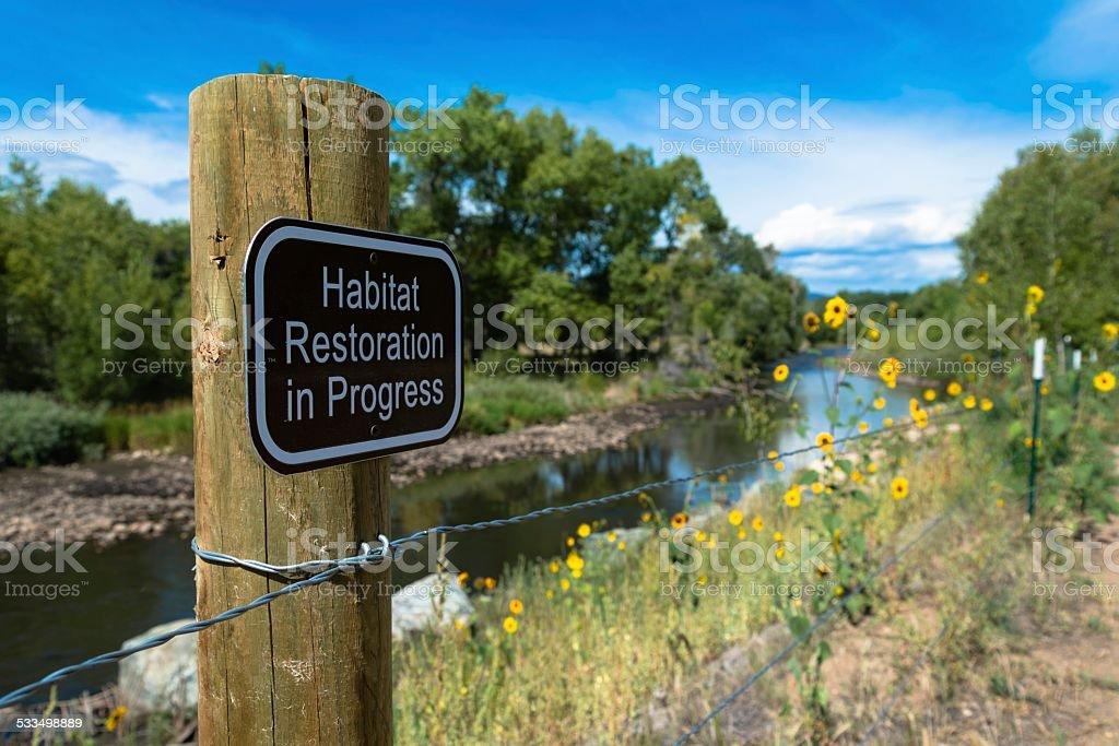 Habitat Restoration, Fort Collins stock photo