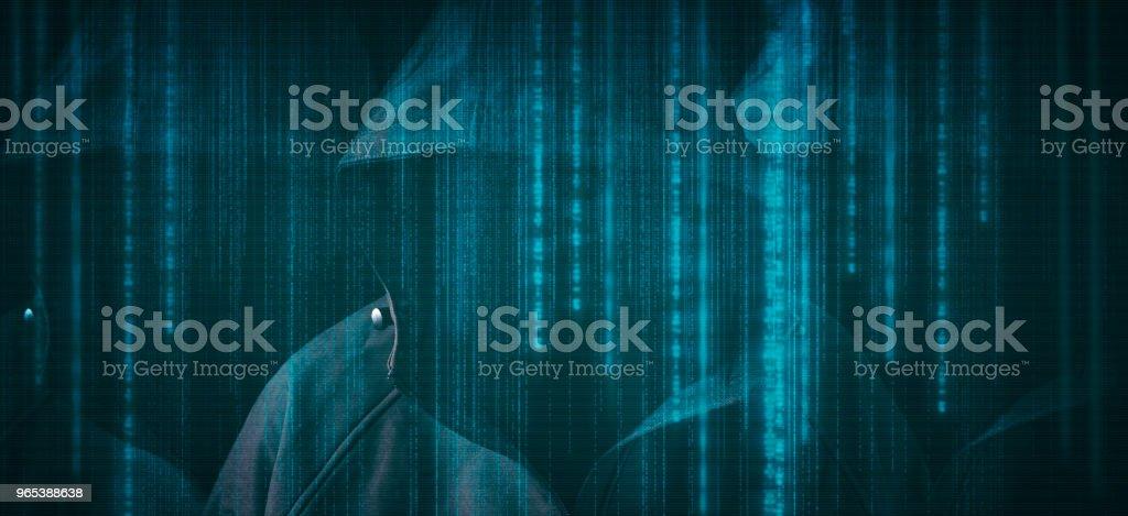 Pirate informatique - Photo de Adulte libre de droits