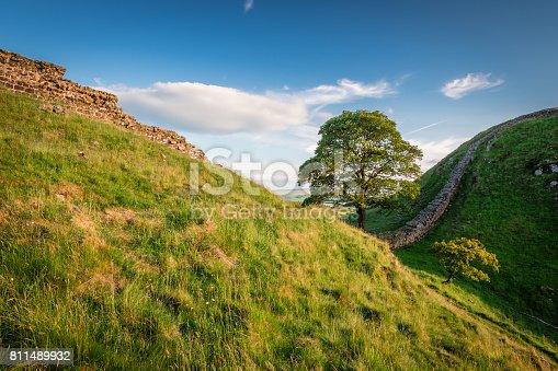 istock Hadrian's Wall at Sycamore Gap 811489932
