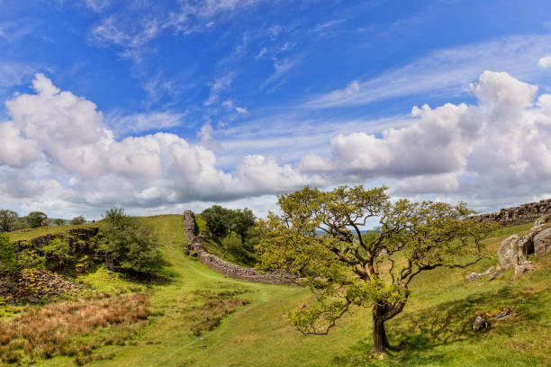 Hadrians's Wall Northumberland UK Hadrian's Wall, Northumberland, running through beautiful green countryside. northeastern england stock pictures, royalty-free photos & images