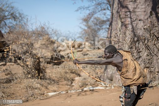 istock Hadzabe man shooting his wooden arrows 1175537020