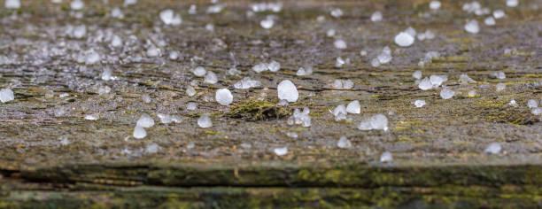 hagelkörner auf einem holzbalken im panorama - wettervorhersage deutschland stock-fotos und bilder