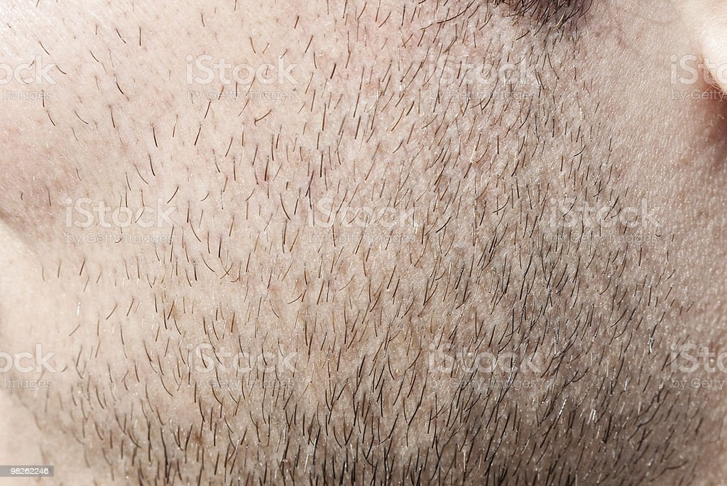 hair bristles on cheek royalty-free stock photo