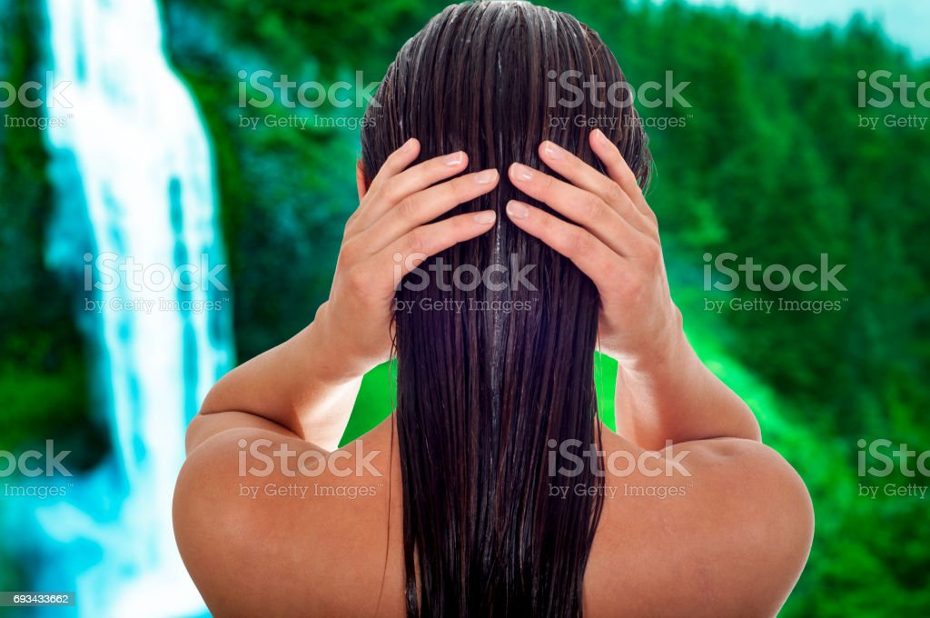 Hair care concept. Back view of woman with long wet hair, tropical background stock photo