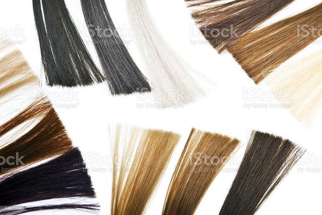 Haarfarbe Proben Stockfoto Und Mehr Bilder Von Blondes Haar Istock