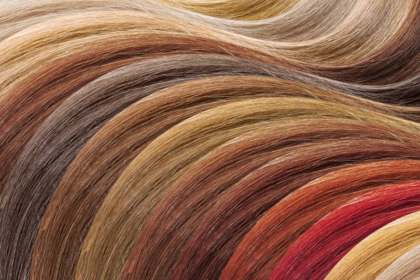 Hair colors palette as background. Dyed samples Hair colors palette as background highlights hair stock pictures, royalty-free photos & images