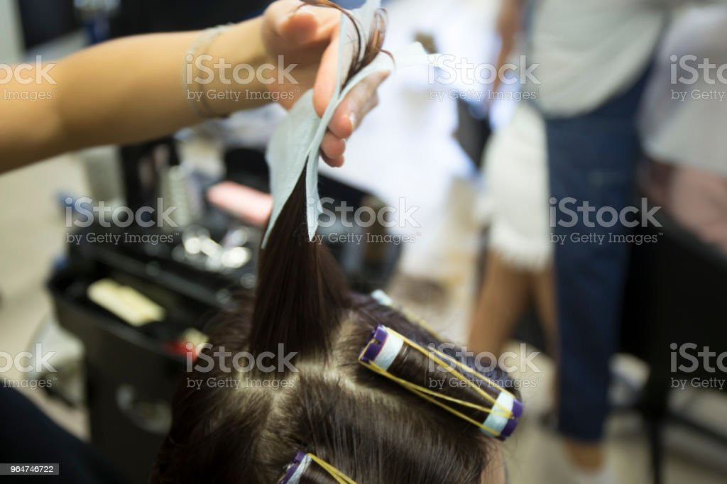 Hair curlers royalty-free stock photo