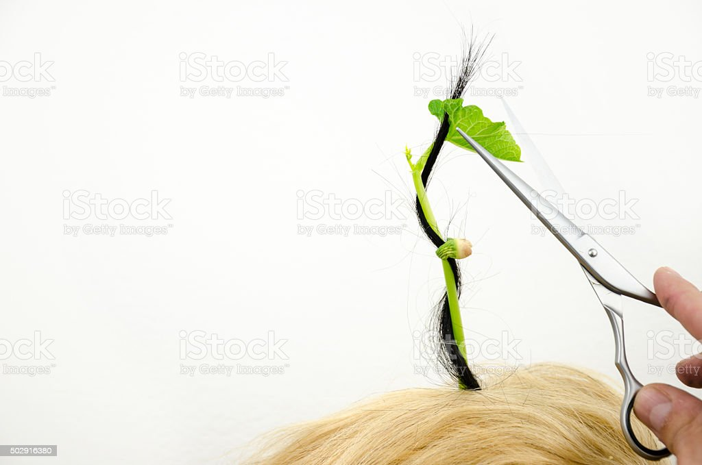Hair Grows Quickly With Regular Haircut And Care Stock Photo