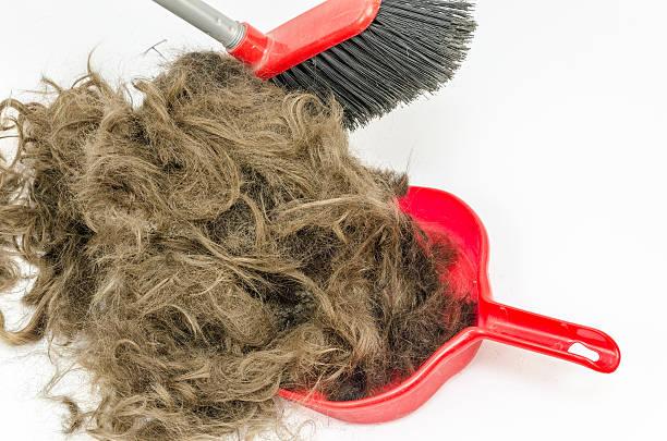 hair in a dustpan with broom - glatze schneiden stock-fotos und bilder