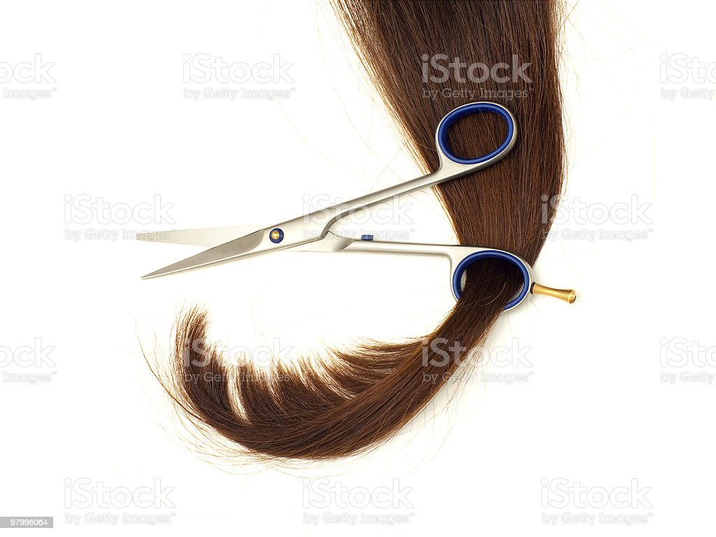 Hair in scissors ring royalty-free stock photo