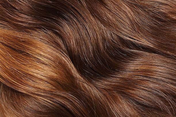 i capelli - capelli castani foto e immagini stock