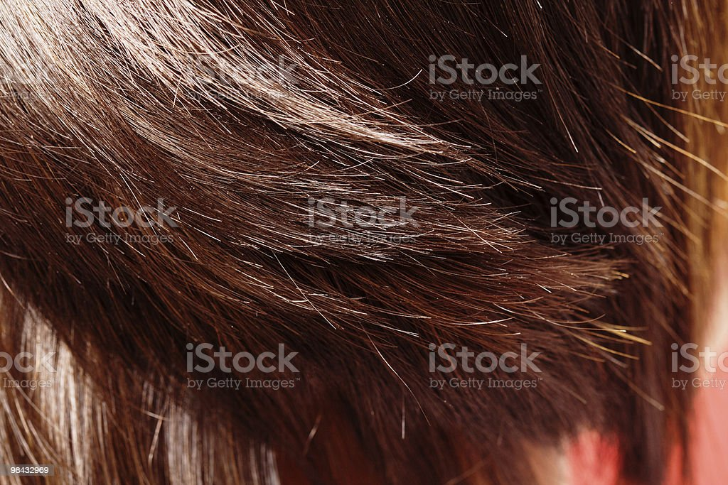 Hair royalty-free stock photo