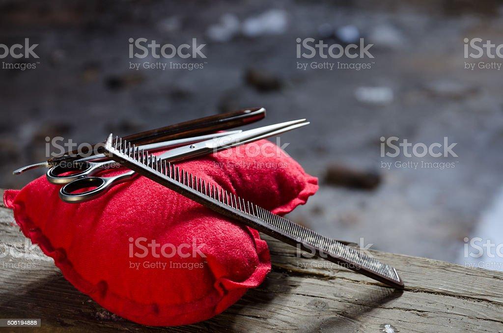 Conjunto de cabelo em pé em uma almofada vermelha - foto de acervo