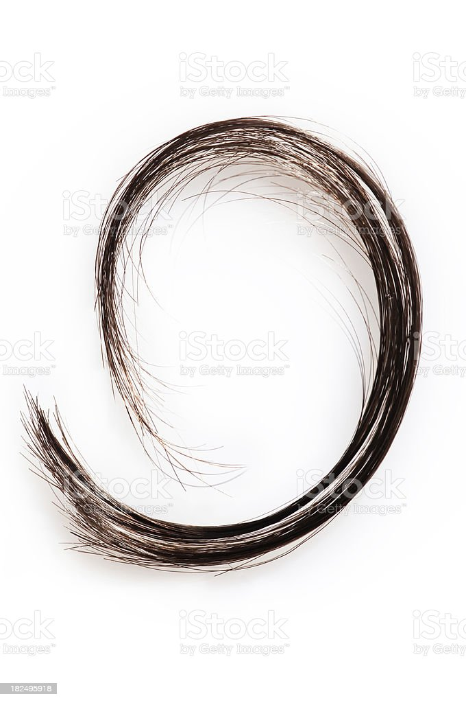 Hair Tuft royalty-free stock photo