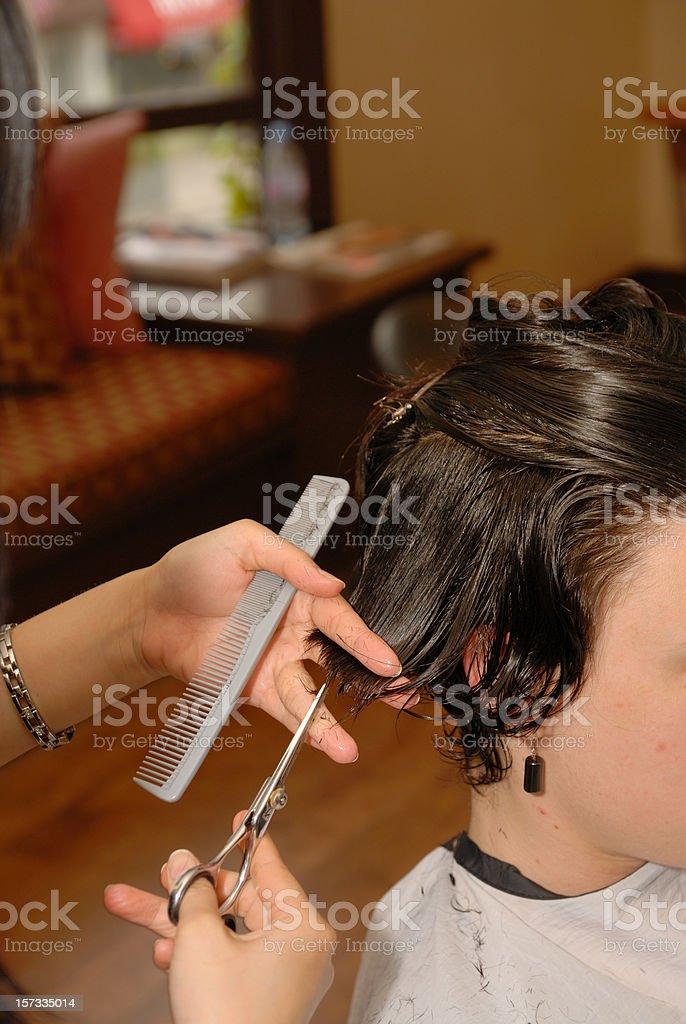 Haircutting royalty-free stock photo