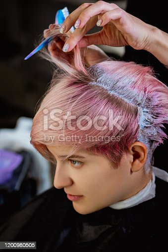 istock Hairdresser colorist dyes the hair of a woman to a client in different colors. 1200980505