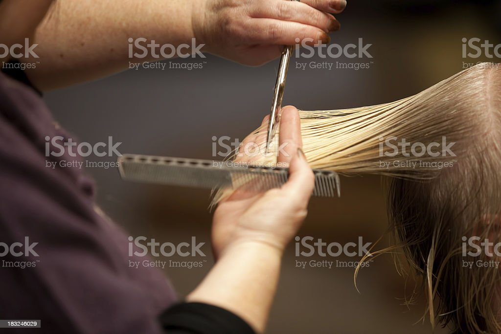 Hairdresser cutting hair royalty-free stock photo