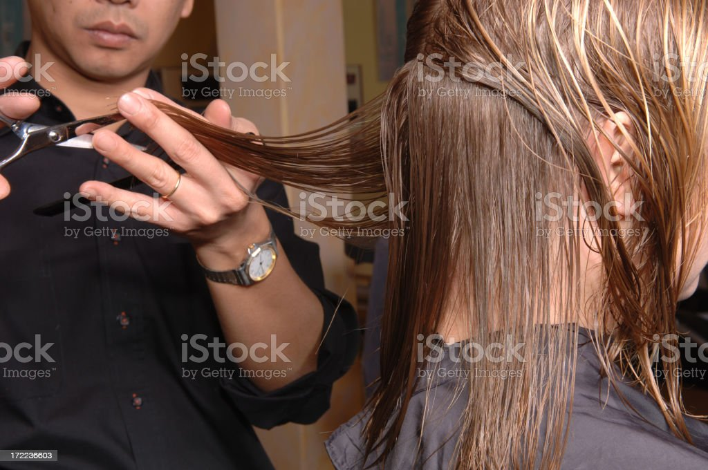 hairdresser cutting the hair of  a woman royalty-free stock photo