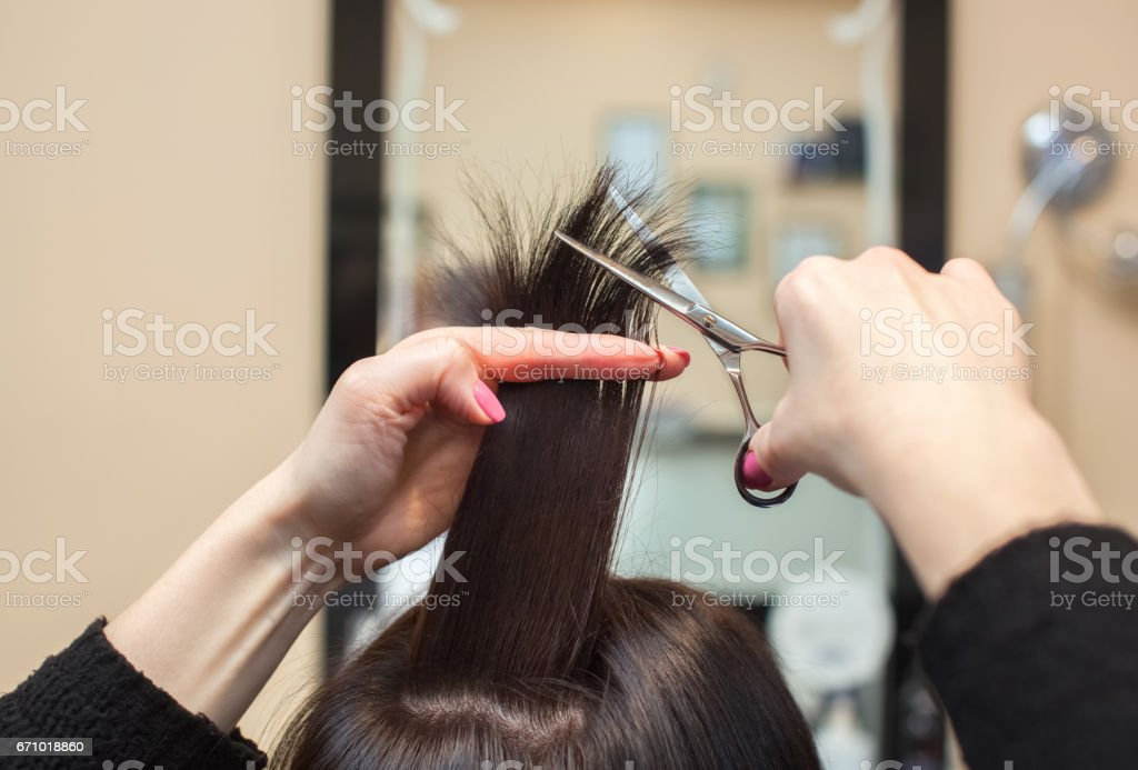 Hairdresser Does A Haircut With Scissors Of Hair To A Young Girl