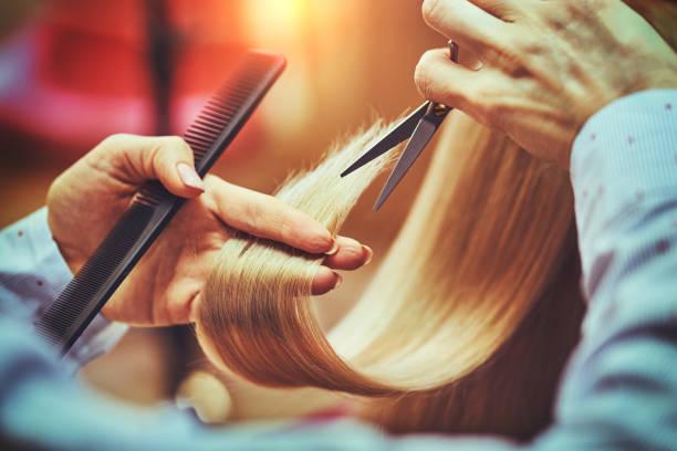 Hairdresser is cutting long hair in hair salon stock photo