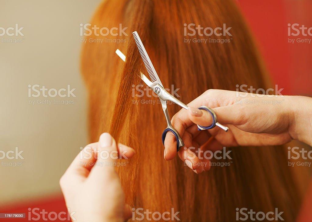 Hairdressern. – Foto