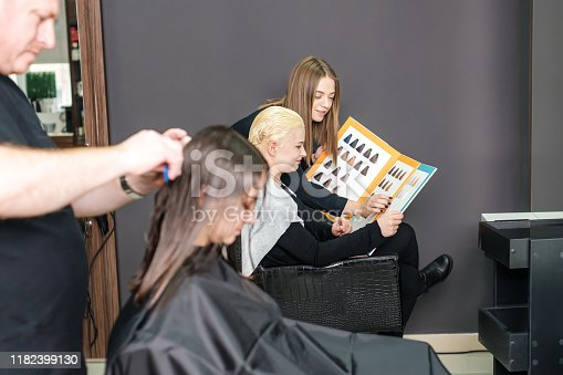 672064598istockphoto Hairstylist with catalog is choosing hair color for female customer at parlor. 1182399130