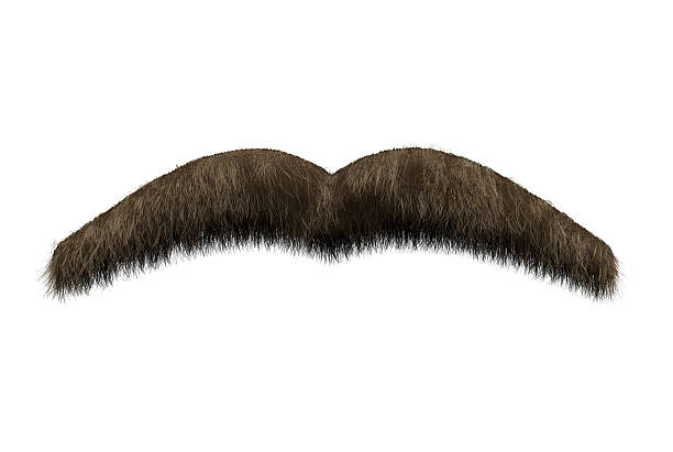 Hairy brown moustache stock photo