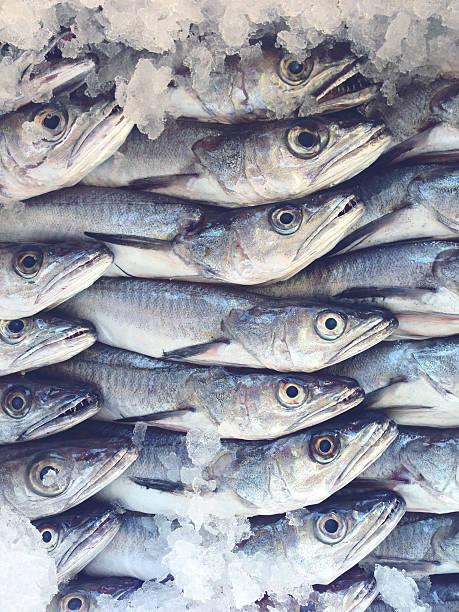 merlu au fishmarket - colin photos et images de collection