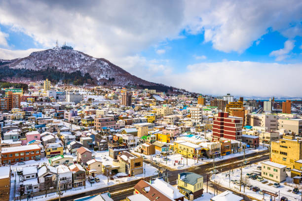 Hakodate Mountain and Skyline stock photo