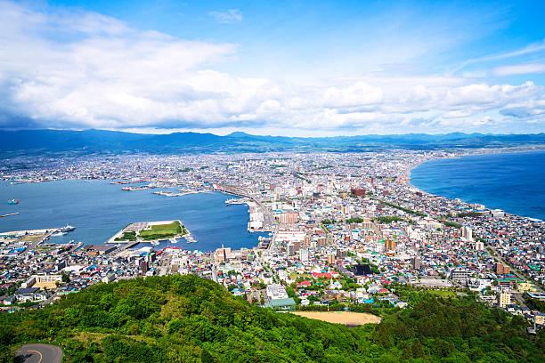 hakodate top view on hokkaido, japan - 北海道 ストックフォトと画像