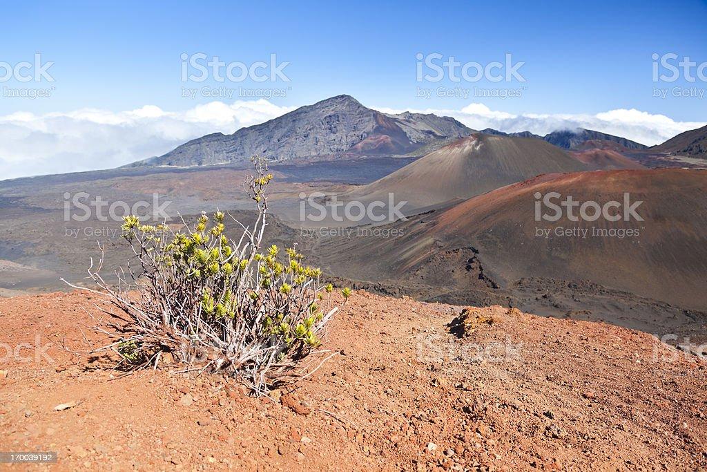 Haleakala Crater And Bush, Maui stock photo