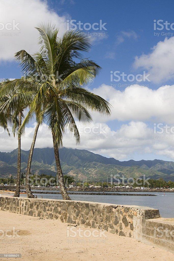 Hale'iwa Marina stock photo