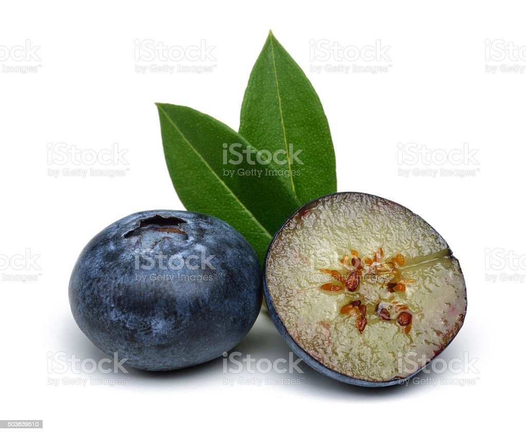 Half blueberry and Blueberry stock photo