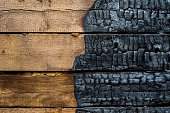Half charred wood
