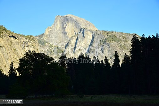 Half Dome framed by green trees and blue sky.